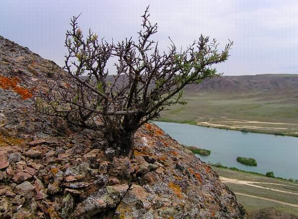 Река или и скалы